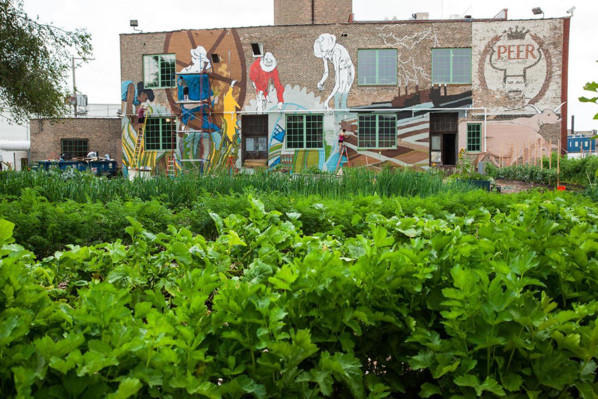 (Photo: Plant Chicago/Flickr)
