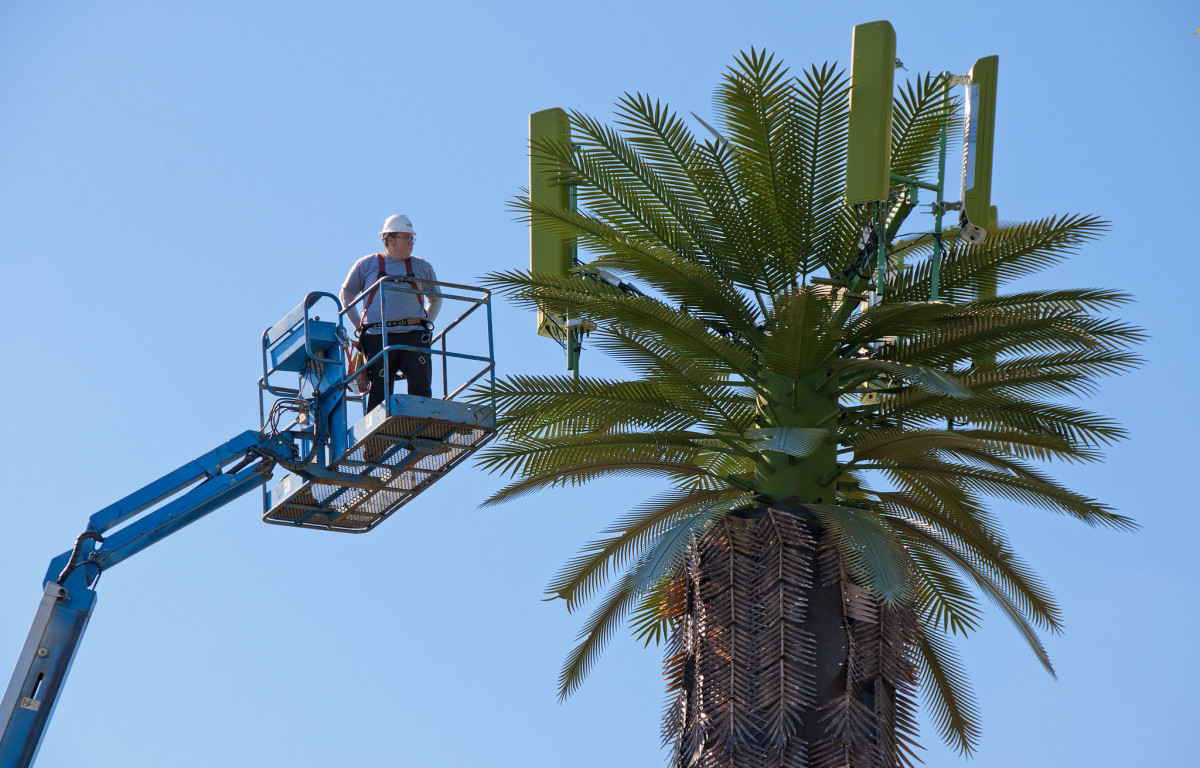 A worker inspects a palm tree-shaped cell tower, which is apparently a real thing. (Photo: Russ Allison Loar/Flickr)