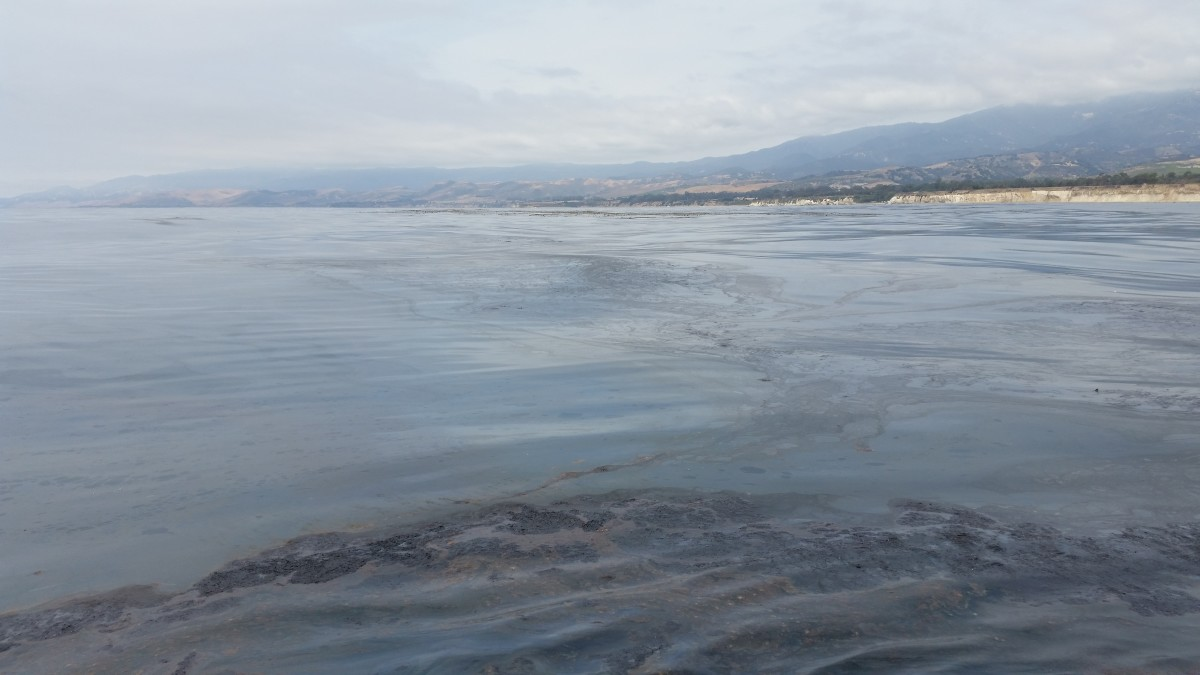 Thick oil in the water off of the Gaviota Coast. There are natural oil seeps offshore of Santa Barbara County, so it can be hard to tell if oil in the water here is from the seeps or from last week's spill. Santa Barbara Channelkeeper staff say this amount of natural oil would be rare for this area. (Photo: Francie Diep/Pacific Standard)