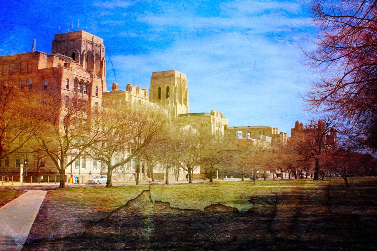 University of Illinois-Chicago campus. (Photo: elegeyda/Shutterstock)