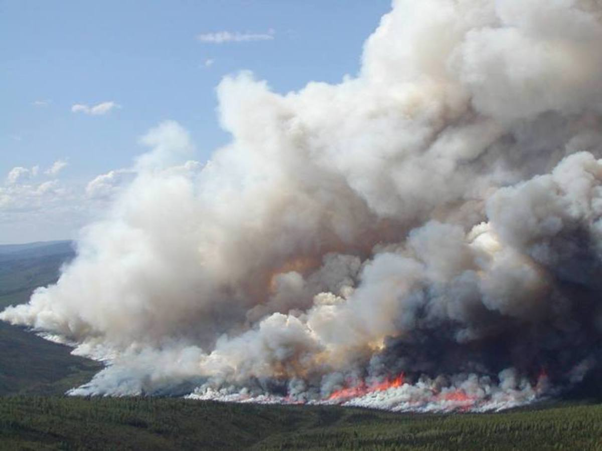 Wildfire in Alaska. (Photo: Alaska DNA/Facebook)