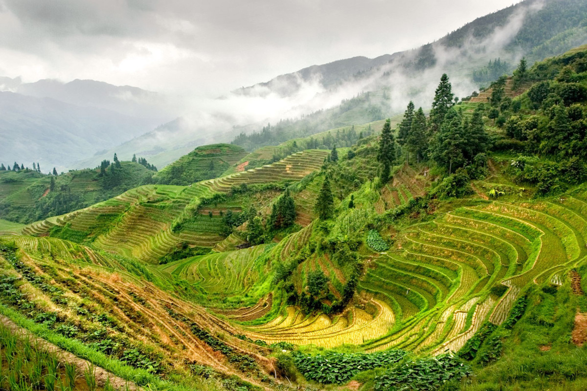 "Rice ""terraces"" in China. (Photo: jackfrench/Flickr)"