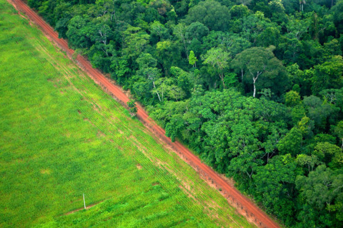 An aerial shot shows the contrast between forest and agricultural landscapes near Rio Branco, Acre, Brazil. (Photo: CIFOR/Flickr)