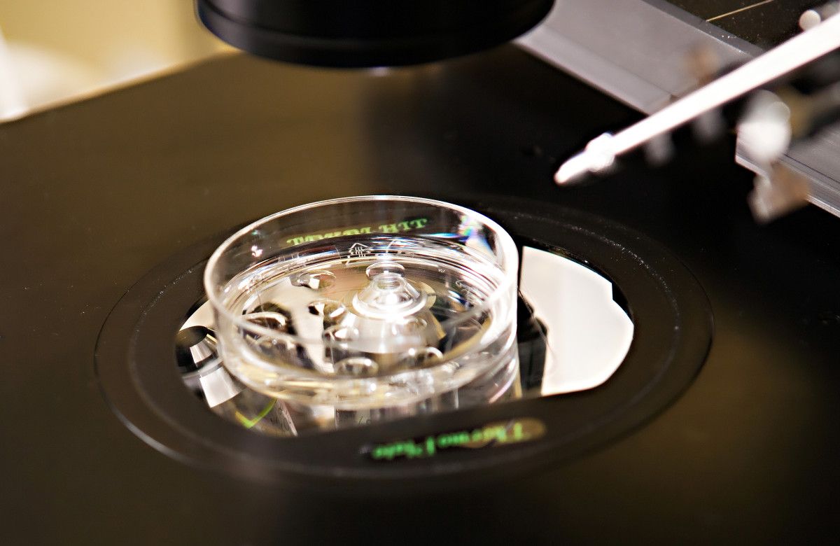Lab equipment used in the in vitro fertilization process. (Photo: Michael Zysman/Shutterstock)