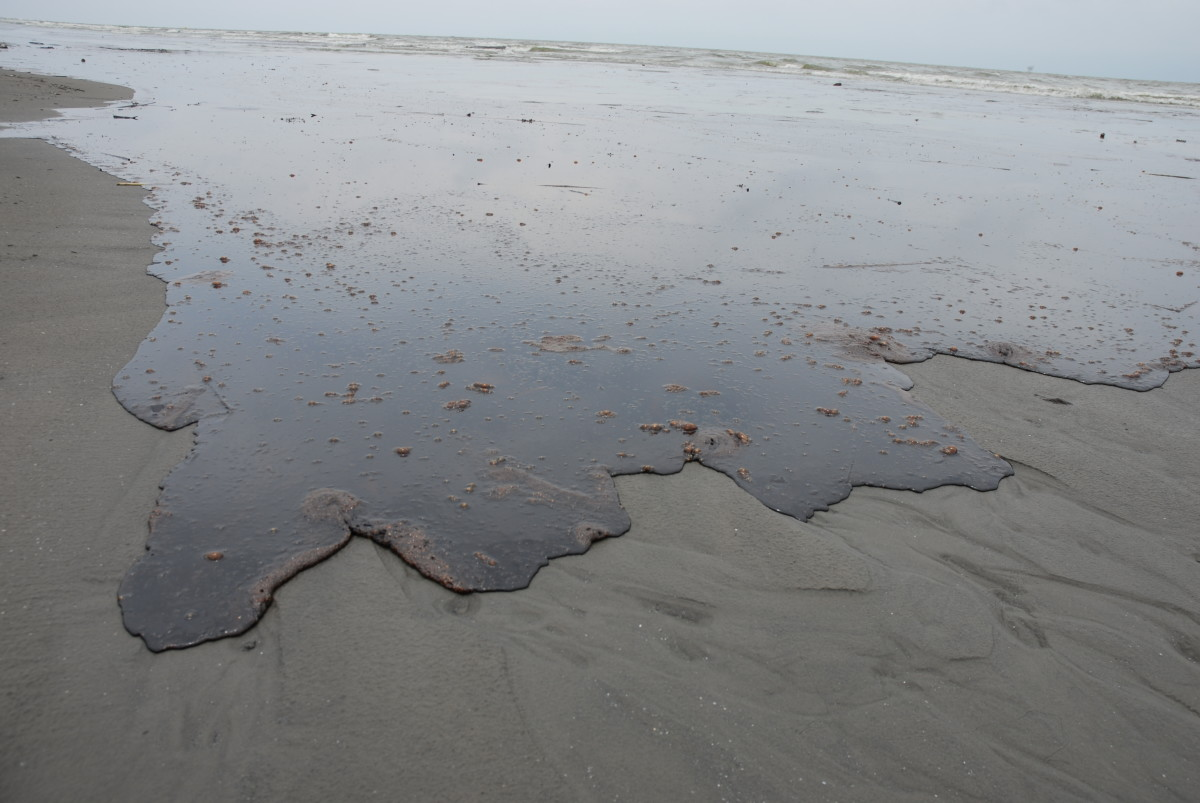 Thick oil washes ashore in Louisiana as a result of the Deepwater Horizon oil spill. (Photo: Wikimedia Commons)