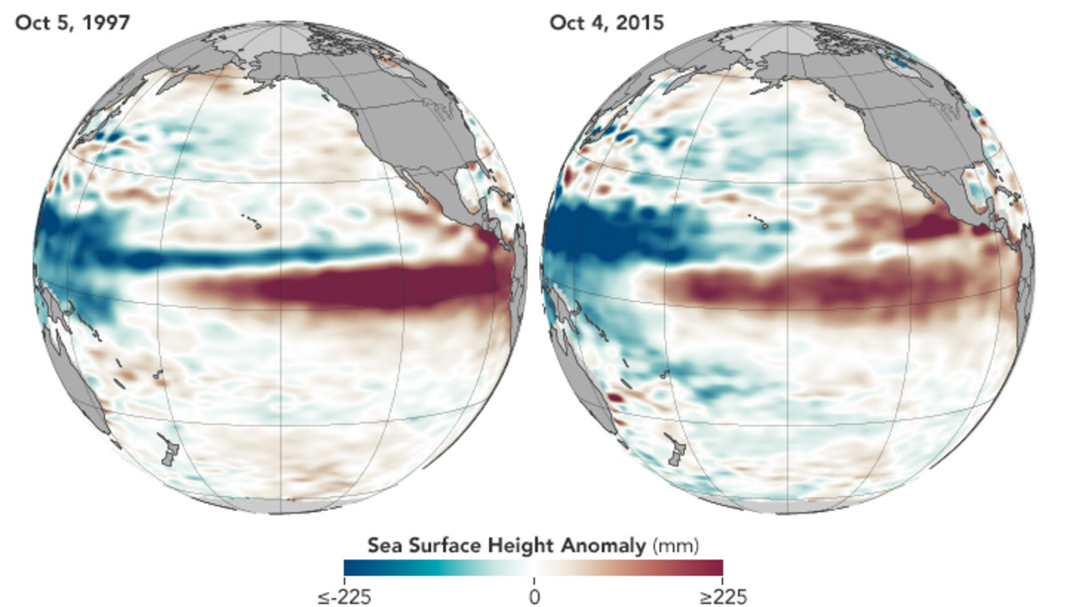 Satellite data depicting the El Niño water levels. (Map: Jesse Allen/NASA Earth Observatory)