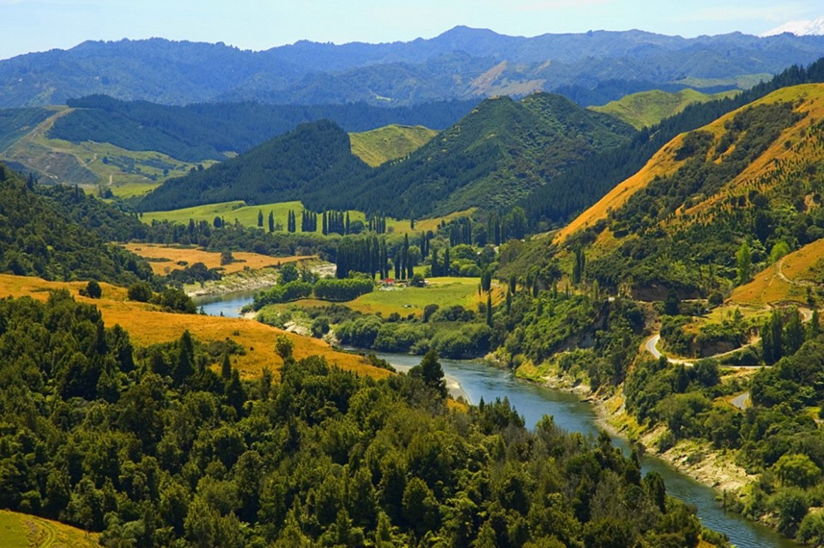 The Whanganui River in New Zealand. (Photo: Wikimedia Commons)
