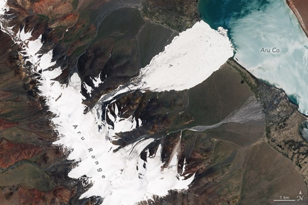 NASA Earth Observatory images by Joshua Stevens, using Landsat data from the U.S. Geological Survey and Sentinel data from the European Space Agency show the Aru Mountain Range before and after a glacier collapsed, sending icy debris streaming far into the valley.
