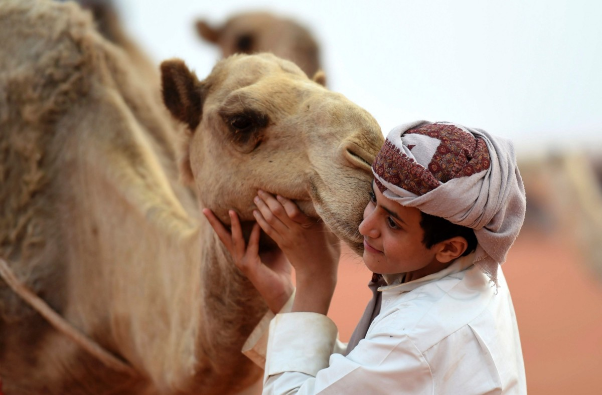A Saudi boy poses with a camel at the annual King Abdulaziz Camel Festival in Rumah on March 29th, 2017. (Photo: Fayez Nureldine/AFP/Getty Images)