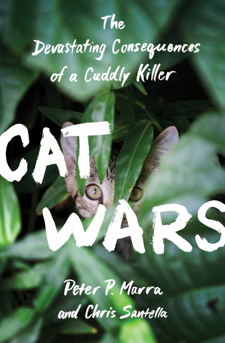 Cat Wars: The Devastating Consequences of a Cuddly Killer.