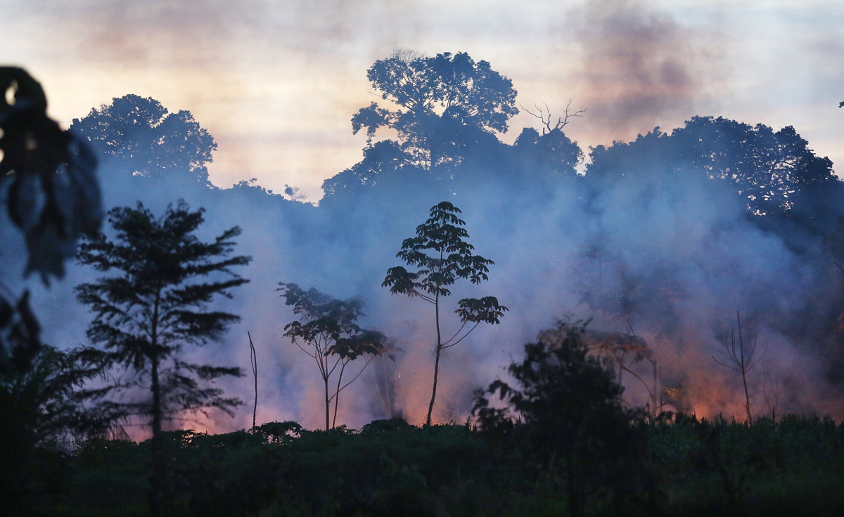 Fire burns in a deforested section in the Amazon lowlands on November 16th, 2013, in Madre de Dios region, Peru.
