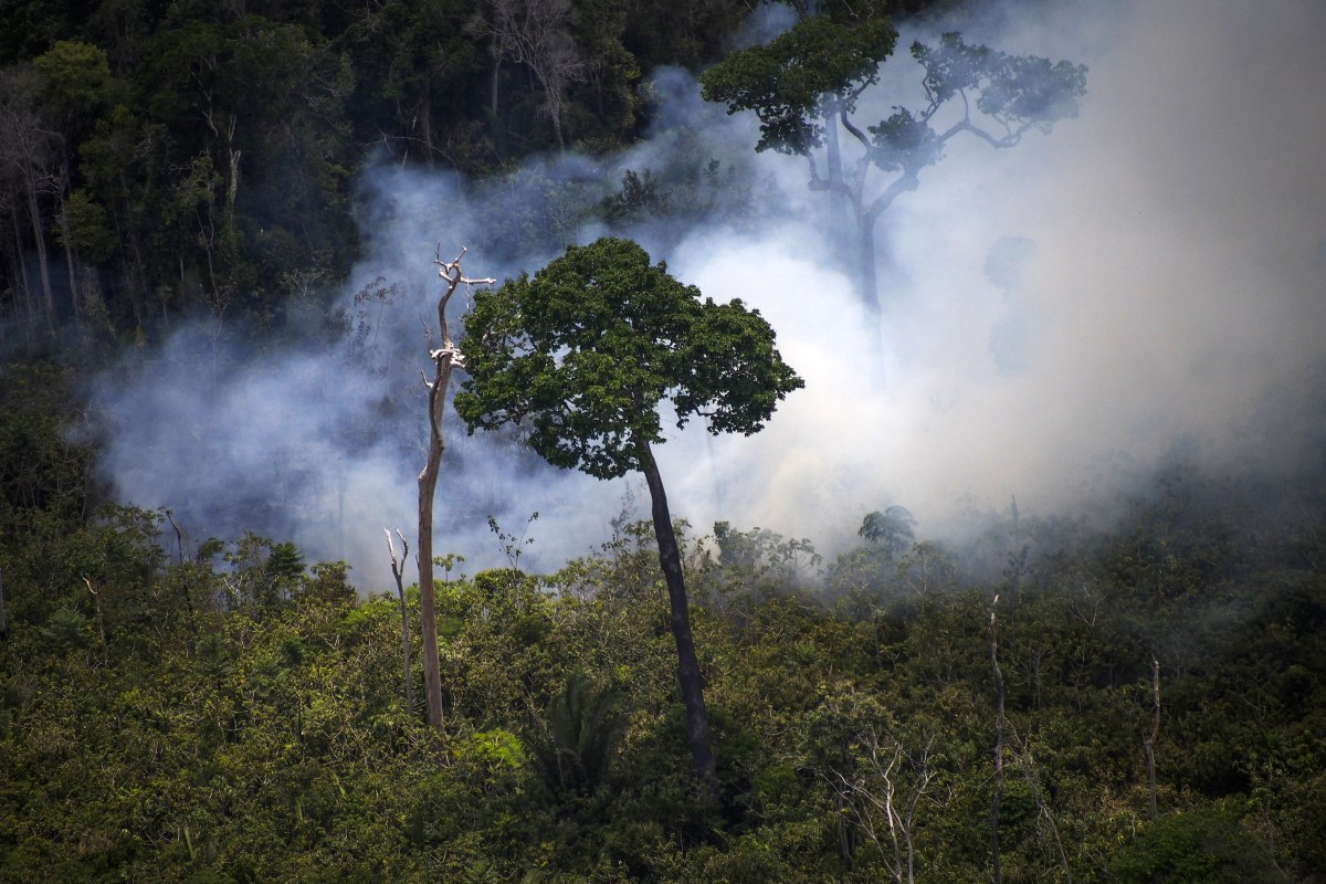 View of a forest fire in the Amazon forest during an overflight by Greenpeace activists over areas in the state of Pará, Brazil.