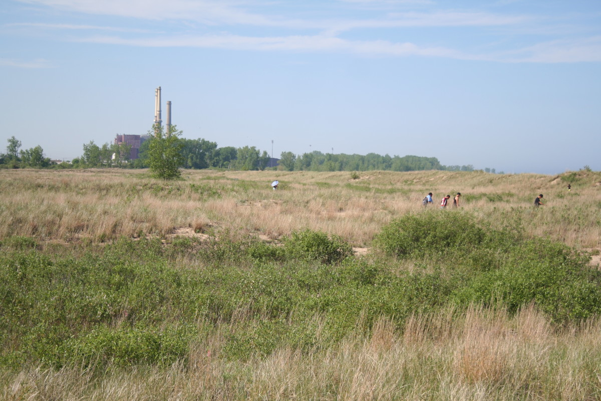 People walk out to the Waukegan beach. The red brick coal plant is operated by NRG Energy.