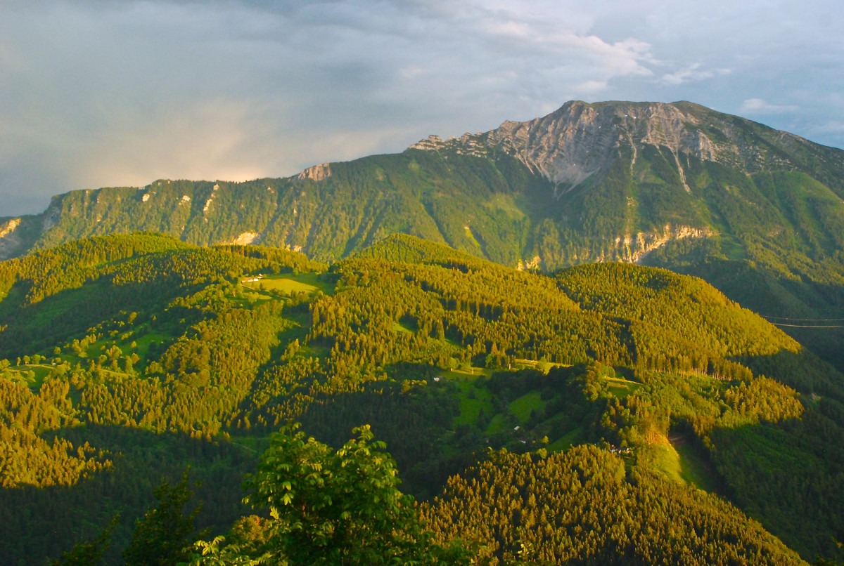 In the European Alps, humankind has developed a working relationship with the mountains, with carefully tended pastures and hayfields carved out of dense forests that have sustained communities and cultures for centuries. Climate change threatens to upend that delicate balance as droughts and heatwaves become more common.