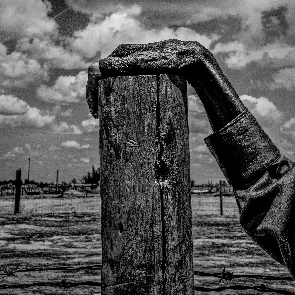 A fence post in Allensworth, California, 2014.