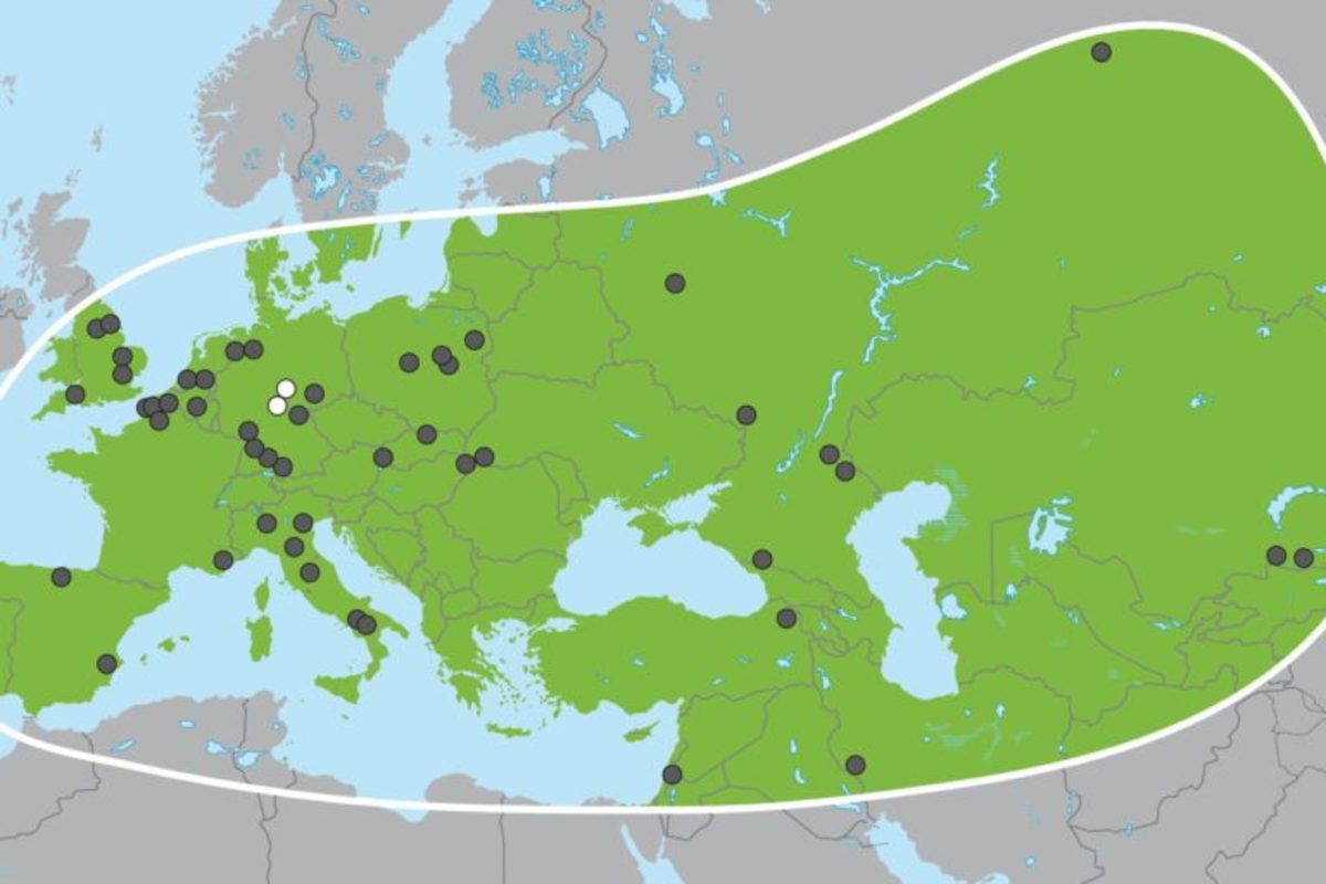 The broad geographic range of the straight-tusked elephant based on fossil discoveries. The two white dots indicate the discovery locations at Weimar-Ehringsdorf and Neumark-Nord.