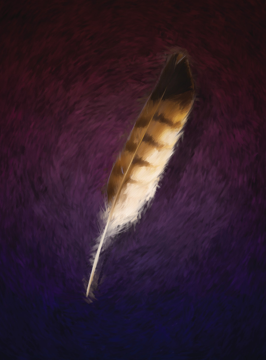feather final2