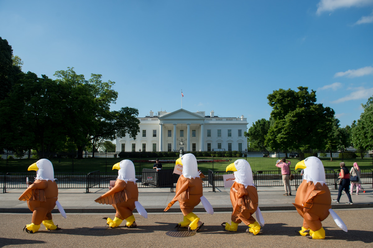 Advocates for national service dressed in bald eagle costumes rally in front of the White House in Washington, D.C., on May 7th, 2018. The protest organized by Service Year Alliance opposes the White House's budget proposal to eliminate national service programs like AmeriCorps and cut funding to the Peace Corps.