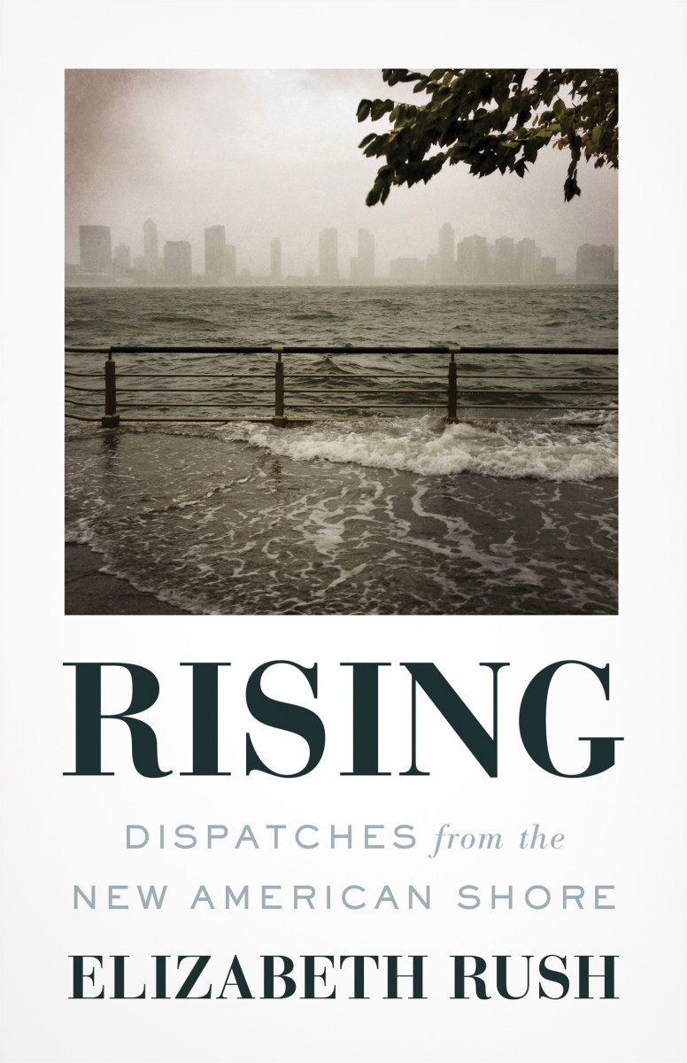 Rising: Dispatches From the New American Shore.