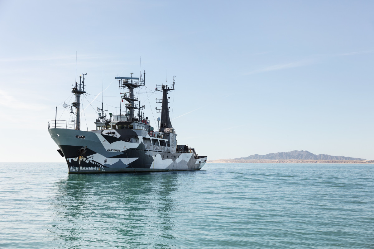 The Sam Simon, an anti-poaching vessel owned by Sea Shepherd, standing by outside of the port of San Felipe in the Gulf of California.