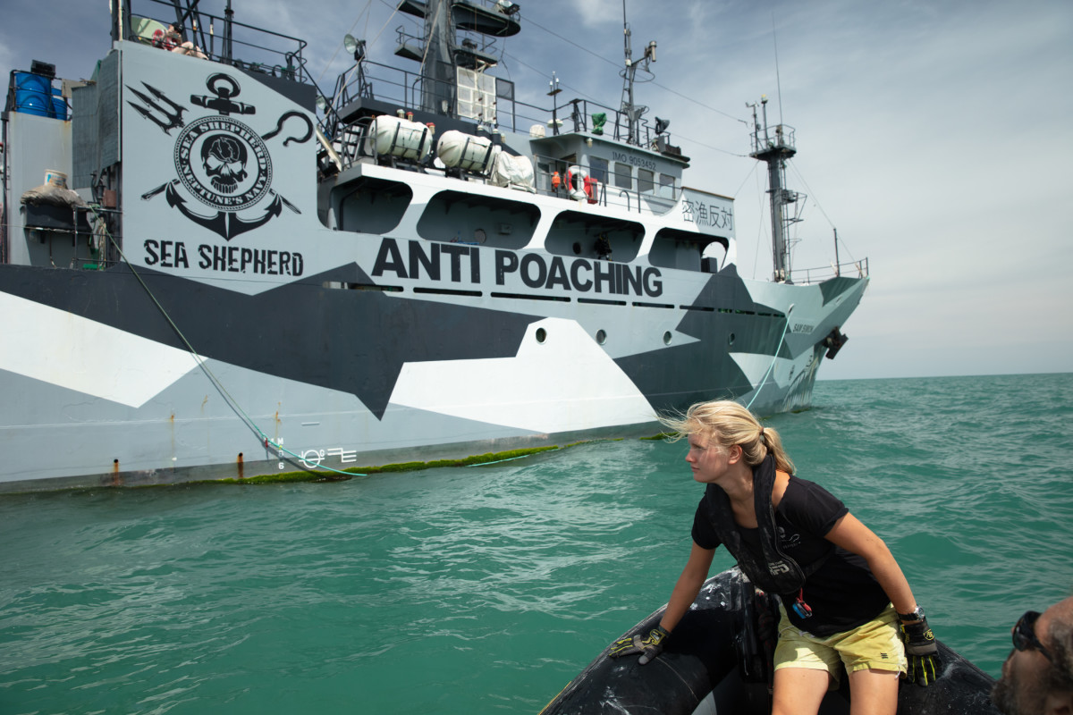 Sea Shepard volunteers in a rubber boat return to the mothership, Sam Simon, after hauling in an illegal gillnet left by Mexican poachers in the Gulf of California.
