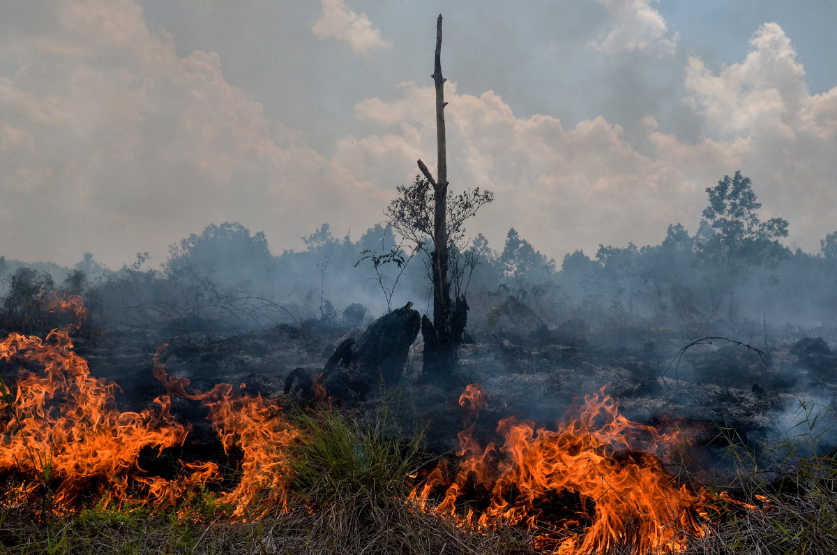 Smoke rises up from a peat-land fire in Pekanbaru, Riau province, on February 1st, 2018, one of 73 detected hotspots causing haze on the island of Sumatra. The haze is an annual problem in Indonesia caused by fires set in forest and on carbon-rich peatland in Indonesia to clear land for palm oil and pulpwood plantations.