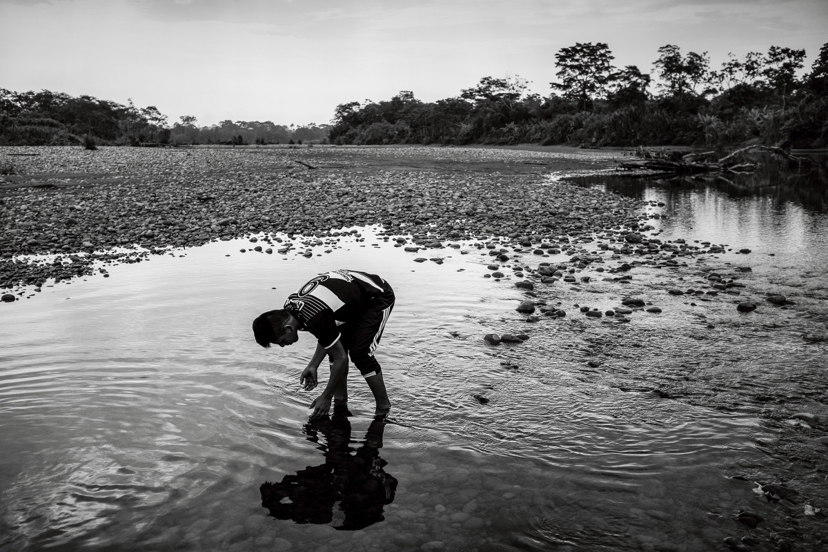"Roberto Criollo searches for small catfish in the Aguarico River. Although the forests and rivers around Dureno no longer provide enough animal protein to satisfy the Cofán's dietary needs, they are still essential to Cofán subsistence. The people of Dureno eat both storebought and gathered foods every day. They still consider themselves to be ""forest dwellers,"" even though wage labor and outside commodities are now important parts of their way of life."