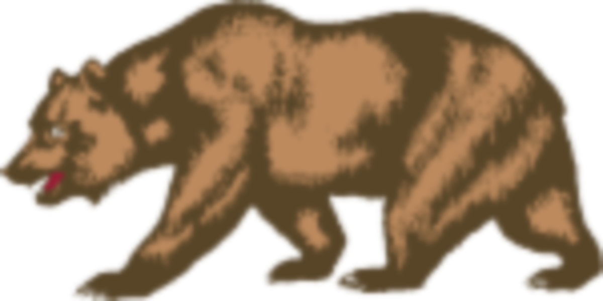 bear break slightly smaller.svg