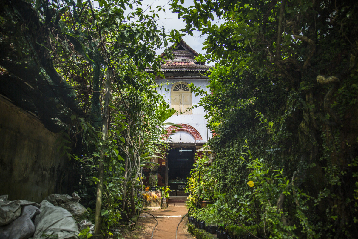 "Kadavumbhagam Synagogue peeks out from behind thick green vegetation. Josephai ""Babu"" Elias transformed the front room of the synagogue into a plant and fish nursery when he took the building into his care in 1977."