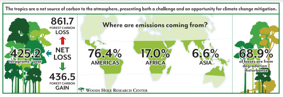 Carbon gains and losses in tropical forests across Asia, Africa, and the Americas.