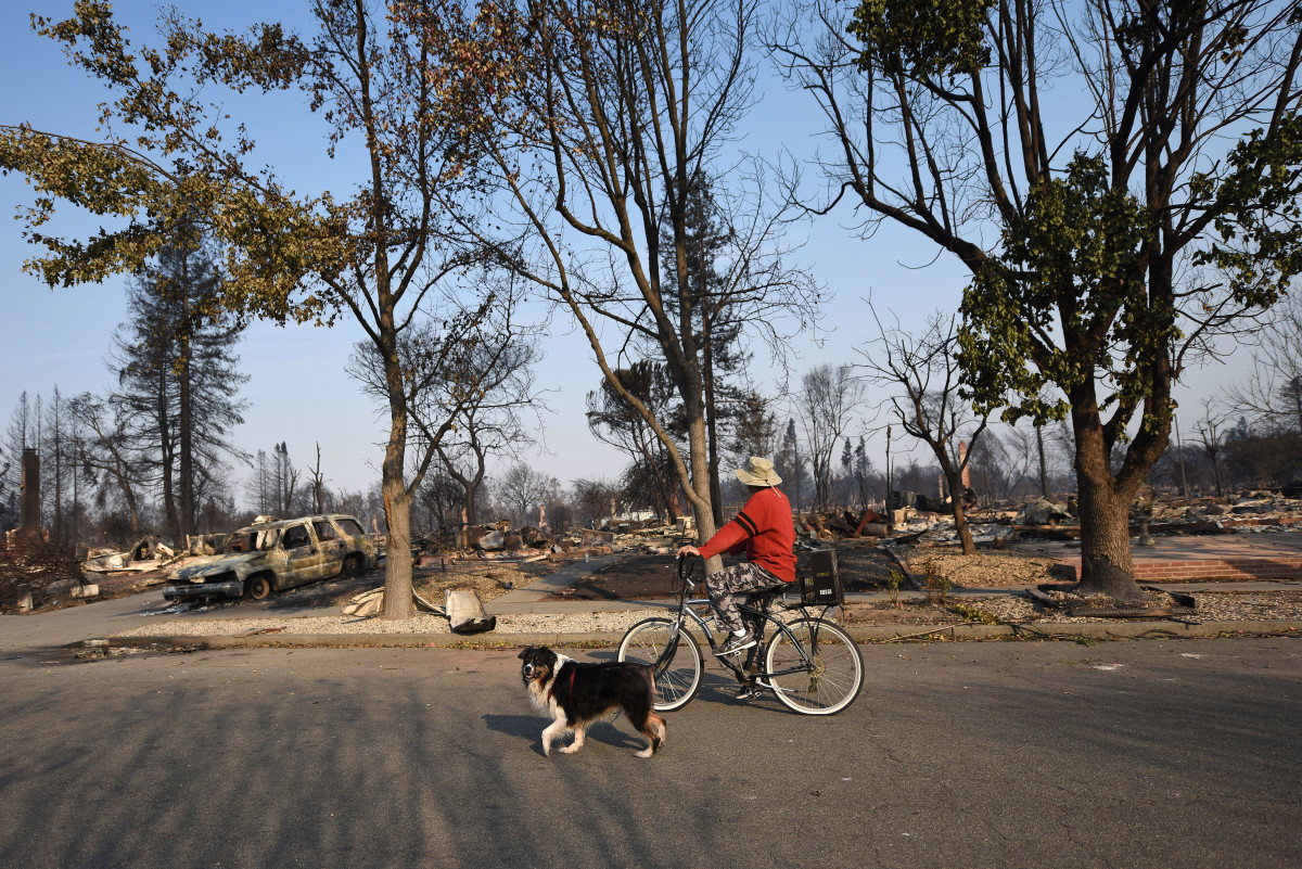 A man rides his bike through a neighborhood destroyed by wildfire in Santa Rosa, California, on October 11th, 2017.