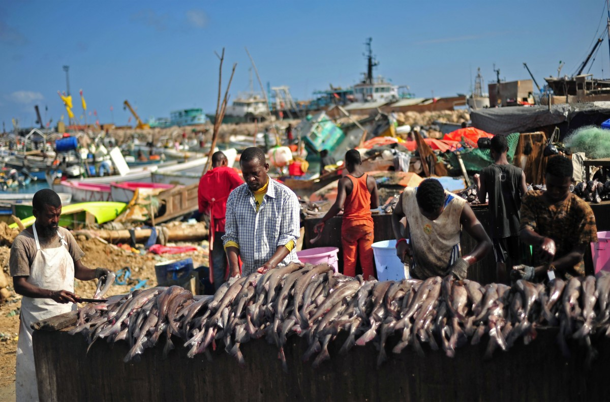 Somali vendors prepare fish for sale at Bosaso beach in Somalia on December 17th, 2016.