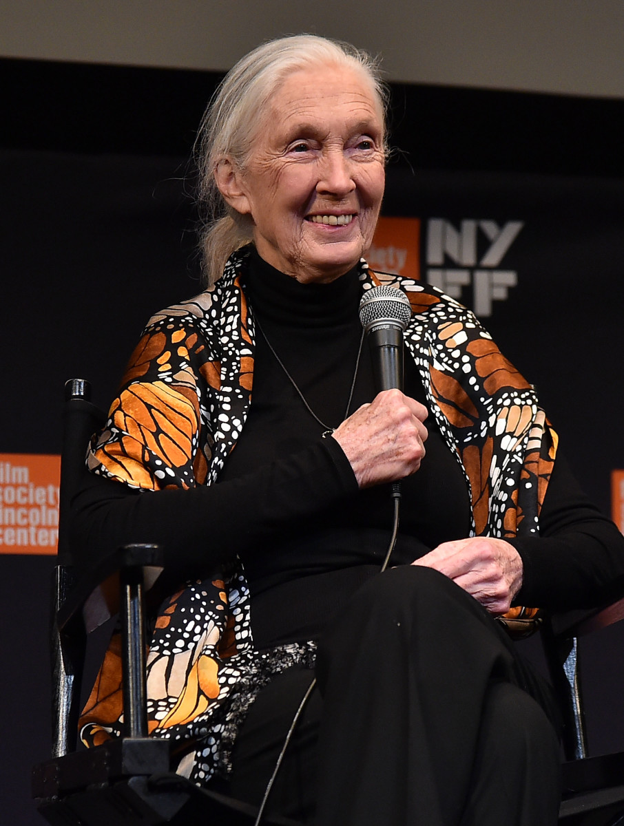 Jane Goodall attends the 55th New York Film Festival.