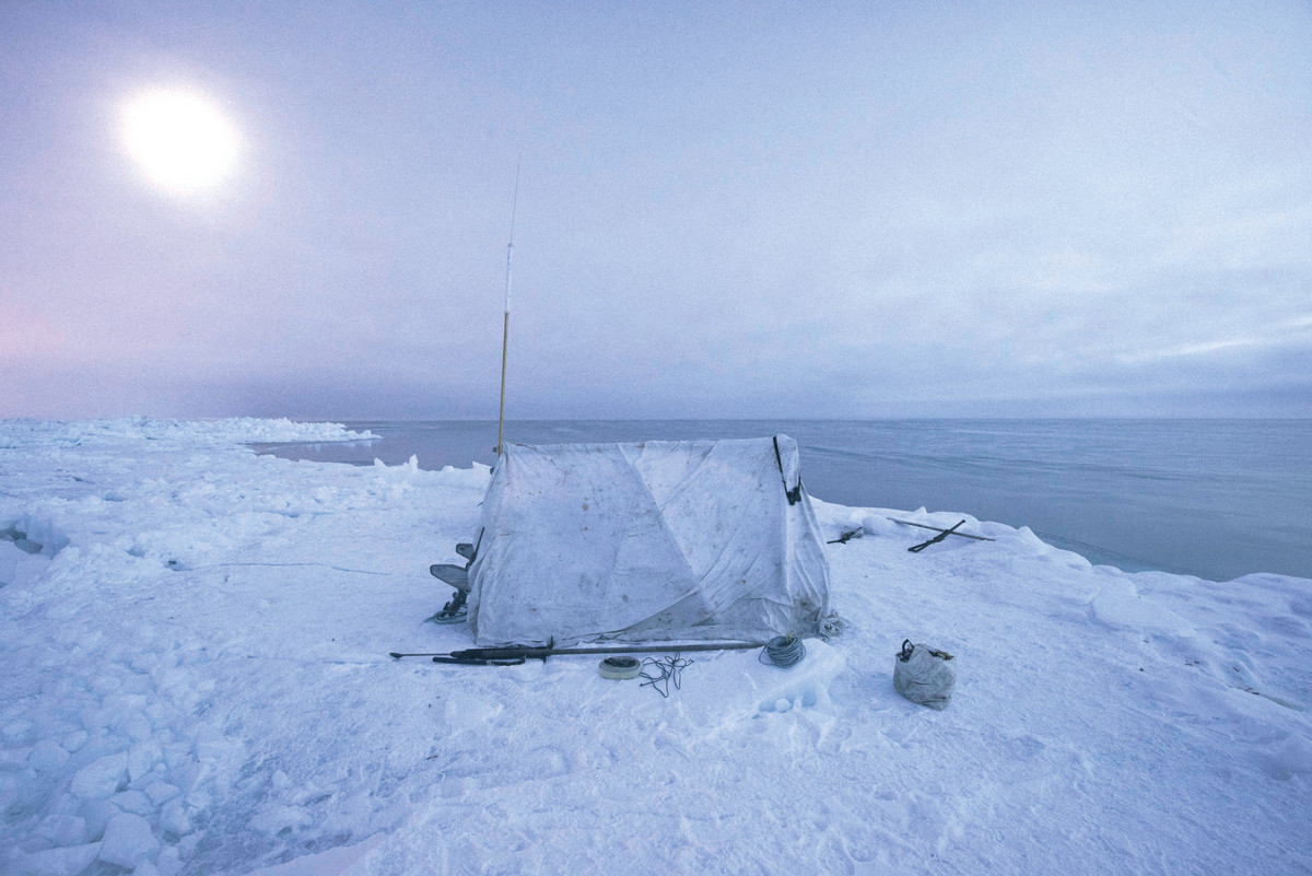 High above the Arctic Circle, on a slab of sea ice a mile from shore, an Inupiaq whaling crew watches for a passing bowhead whale under the light of the midnight sun.