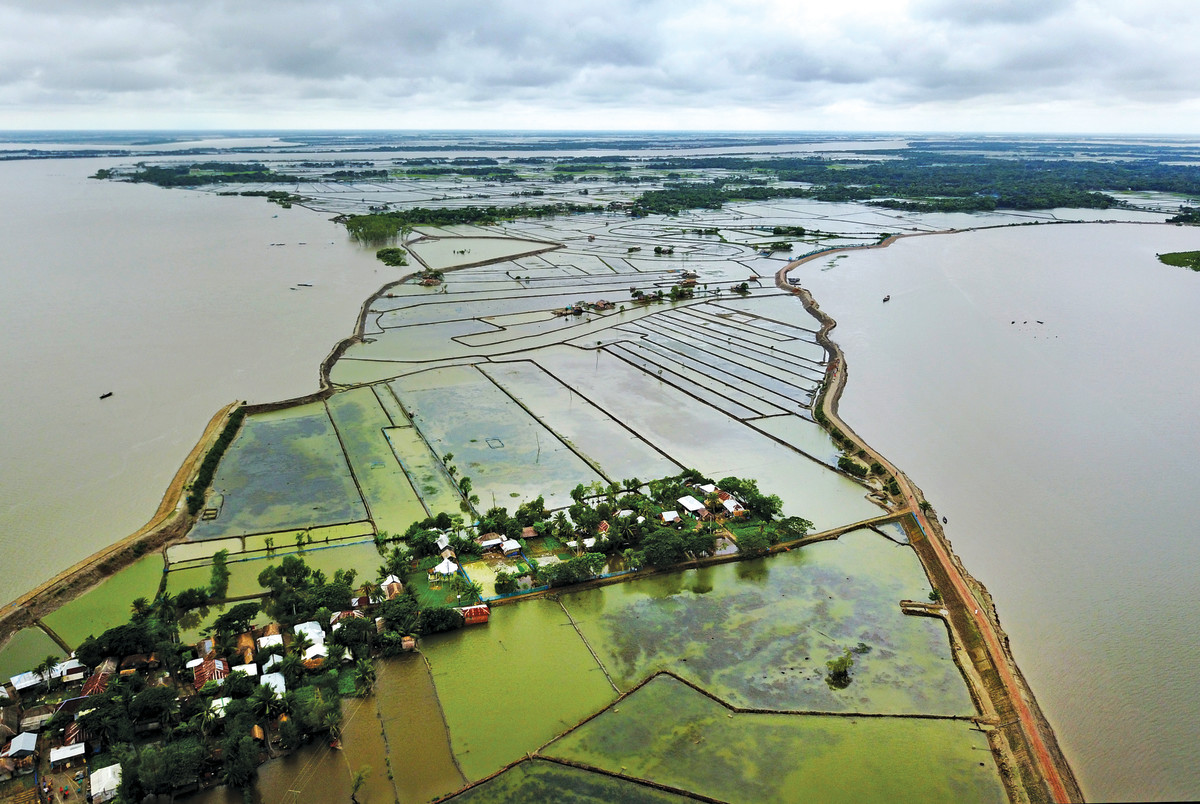 In southern Bangladesh, soil embankments protect rise paddies from the Kapotaksma (left) and Shakbaria (right) rivers during the rainy season, but the heavy storm surges frequently destroy them.