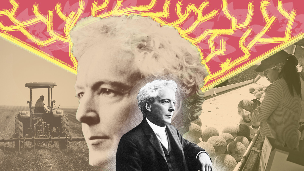 U.S. horticulturalist Luther Burbank is considered the father of California agriculture and one of the first to manipulate plant genetics to create new versions of plums, potatoes, and other crops.