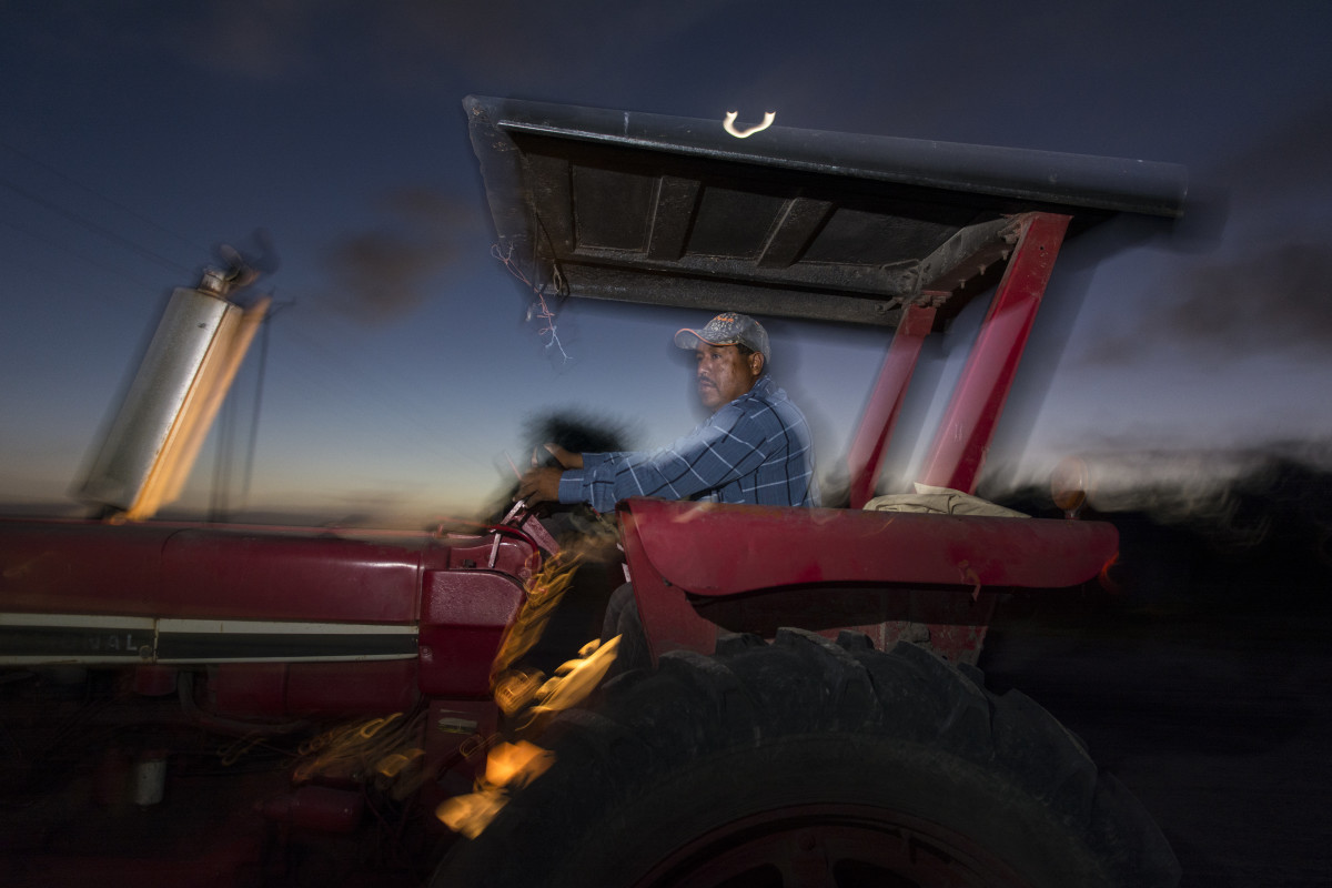 Before dawn, a man boards and starts the tractor he will drive all day in the sugarcane fields of South Texas.