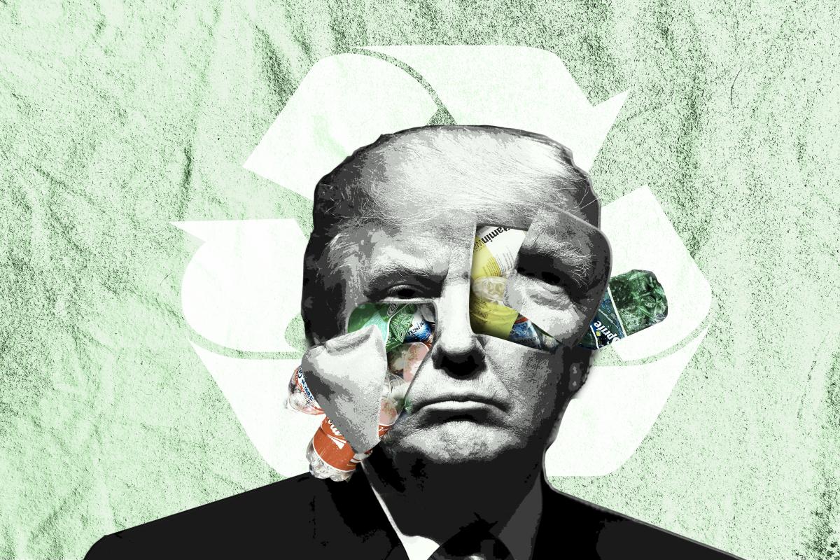 Trump Plastic