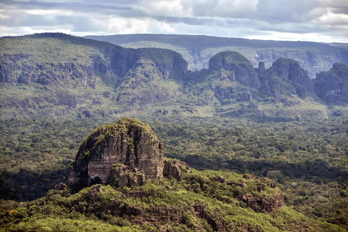 The Colombian Amazon.