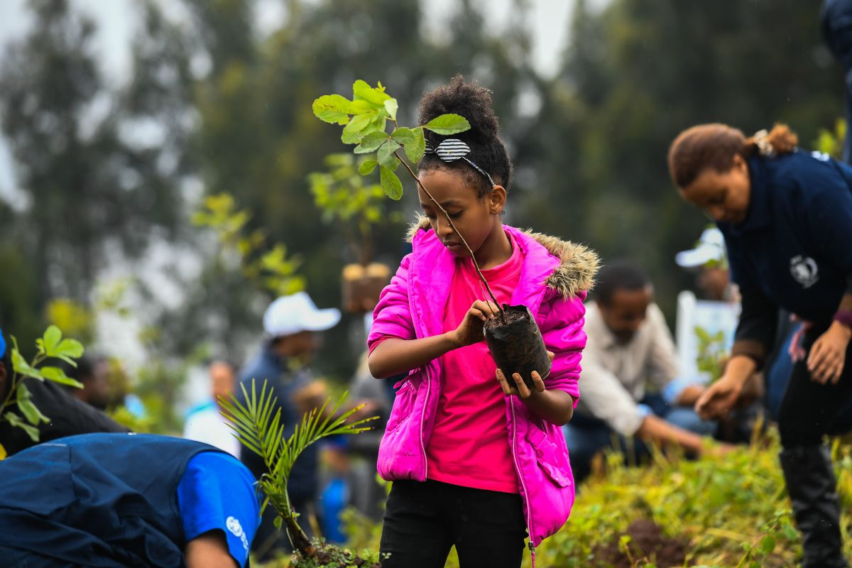 A young girl takes part in a national tree-planting drive in Ethiopia's capital, Addis Ababa, on July 28th, 2019.