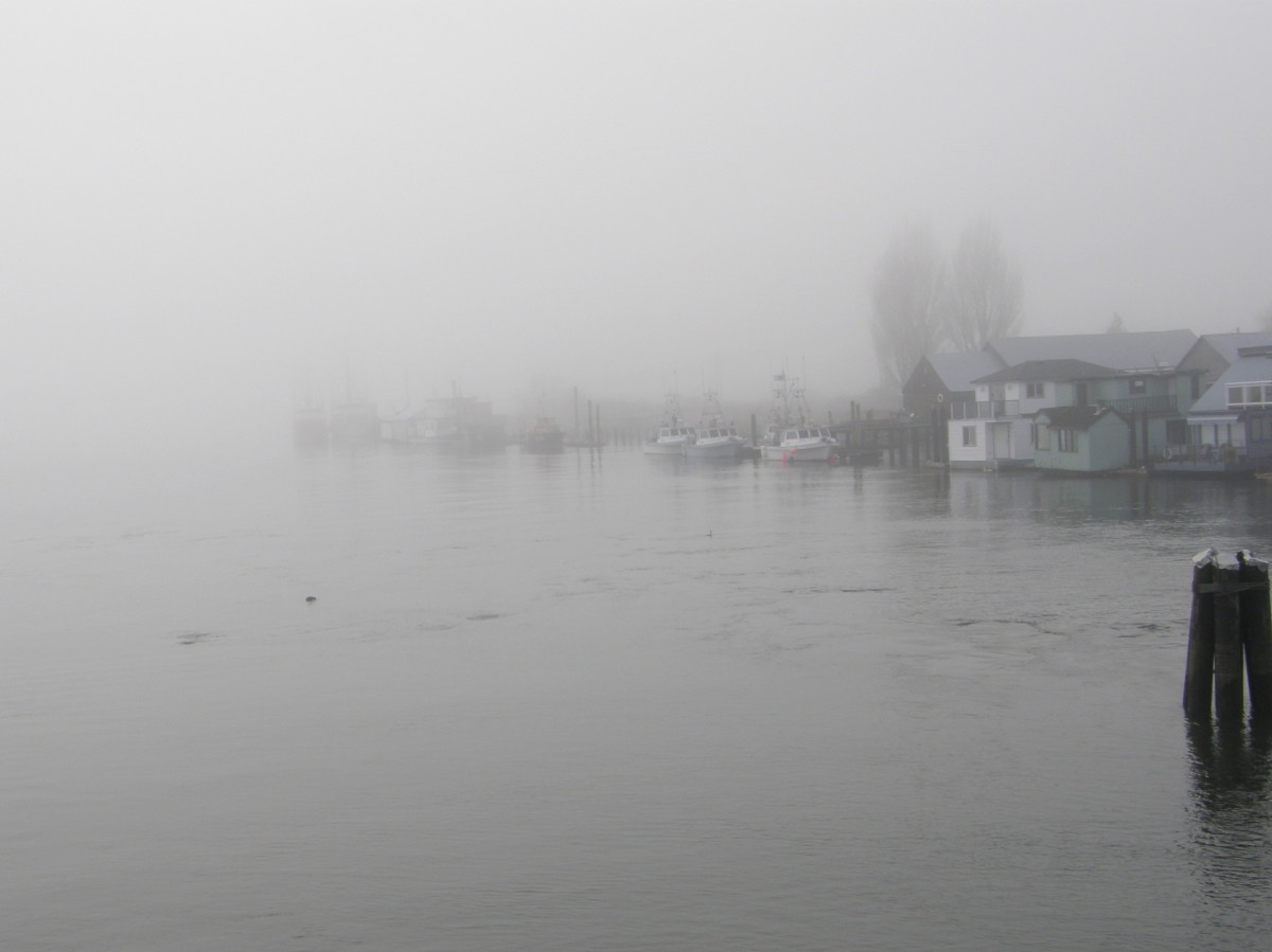 Mist on the Fraser River in Delta, British Columbia, Canada.