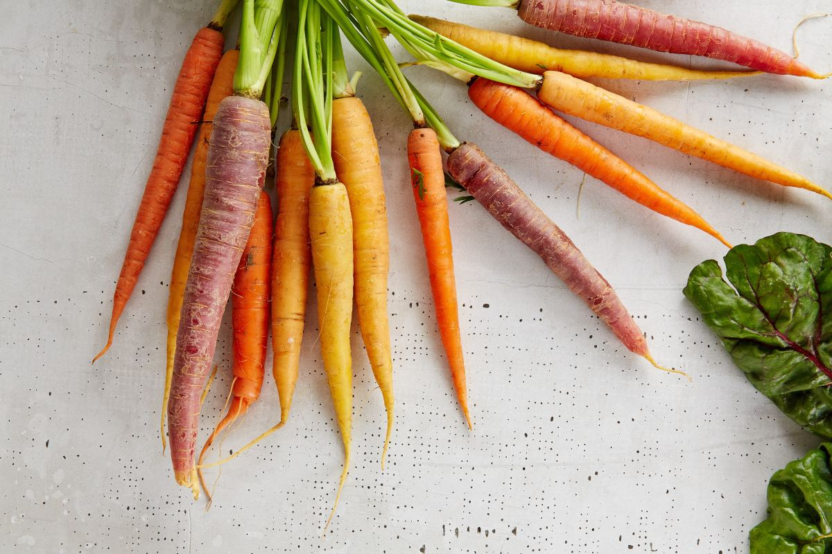 Sustainable farming vegetables