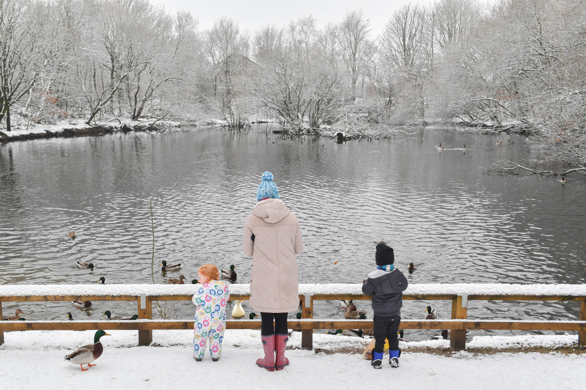 Matilda, two (left), and Oliver, three, feed the ducks with their mother in Stalybridge Country Park on January 30th, 2019, in Lancashire, United Kingdom.