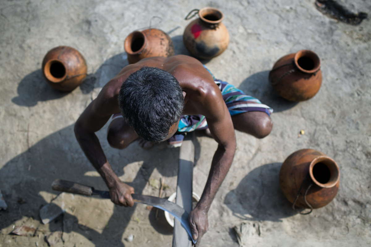 A gachhi sharpens the curved knife he will use to carve away the bark of date palm trees, which will cause the trees to ooze the sap the gachhi is interested in.