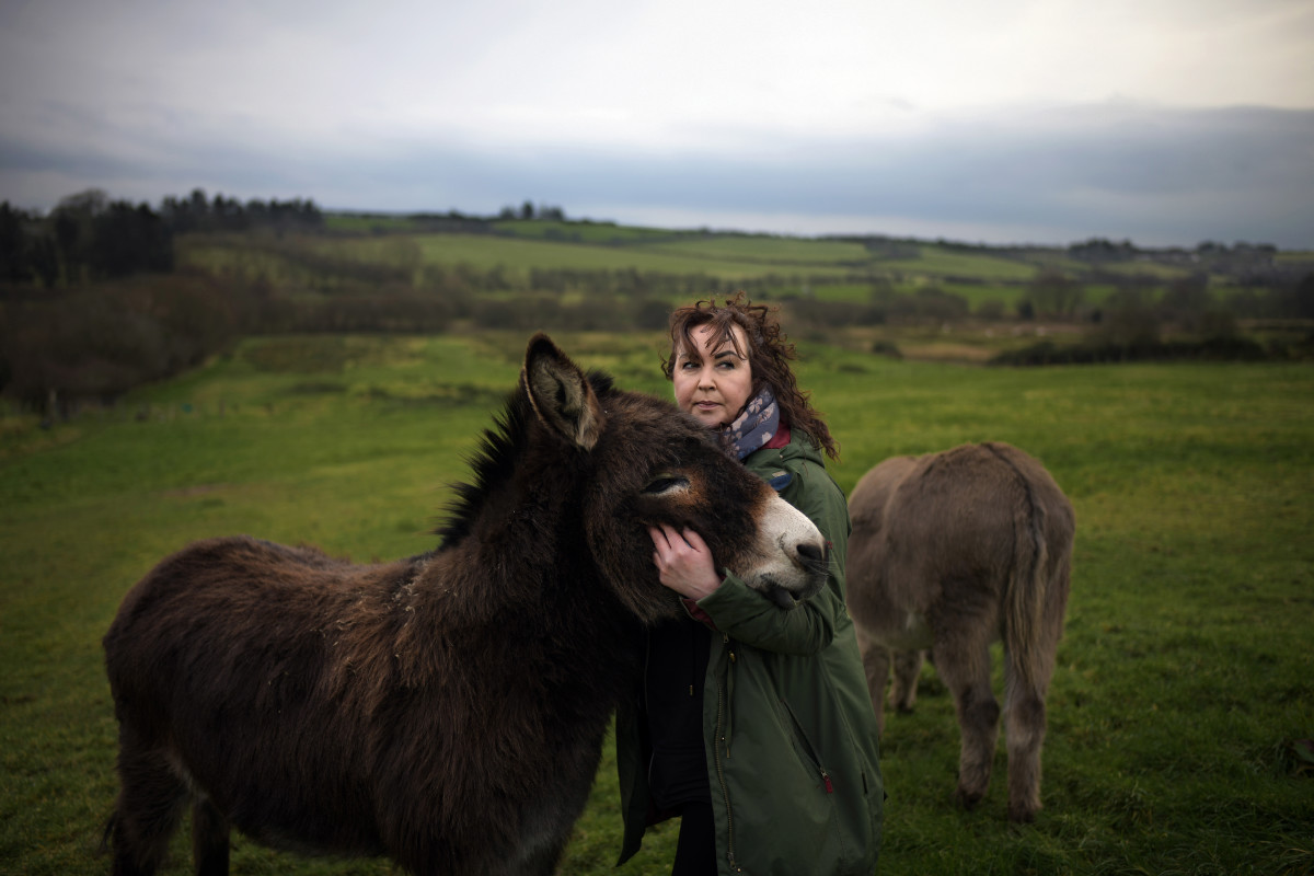"""Julie Taylor feeds her donkeys along the Irish border on February 15th, 2019, in Muff, Ireland. Taylor, who lives on the northern side of the border in nearby Londonderry travels the short distance into Ireland to attend to her animals. She says if a hard border returns, """"They don't have the manpower to control a border."""""""