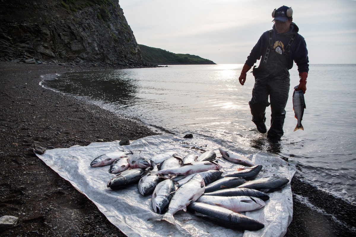 Joseph John Jr. washes freshly caught salmon with his son, Jeremiah John in Newtok, Alaska. Newtok has a population of approximately 375 ethnically Yupik people. As global temperatures rise, the village is being threatened by the melting of permafrost, greater ice and snow melt, and larger storms from the Bering Sea.