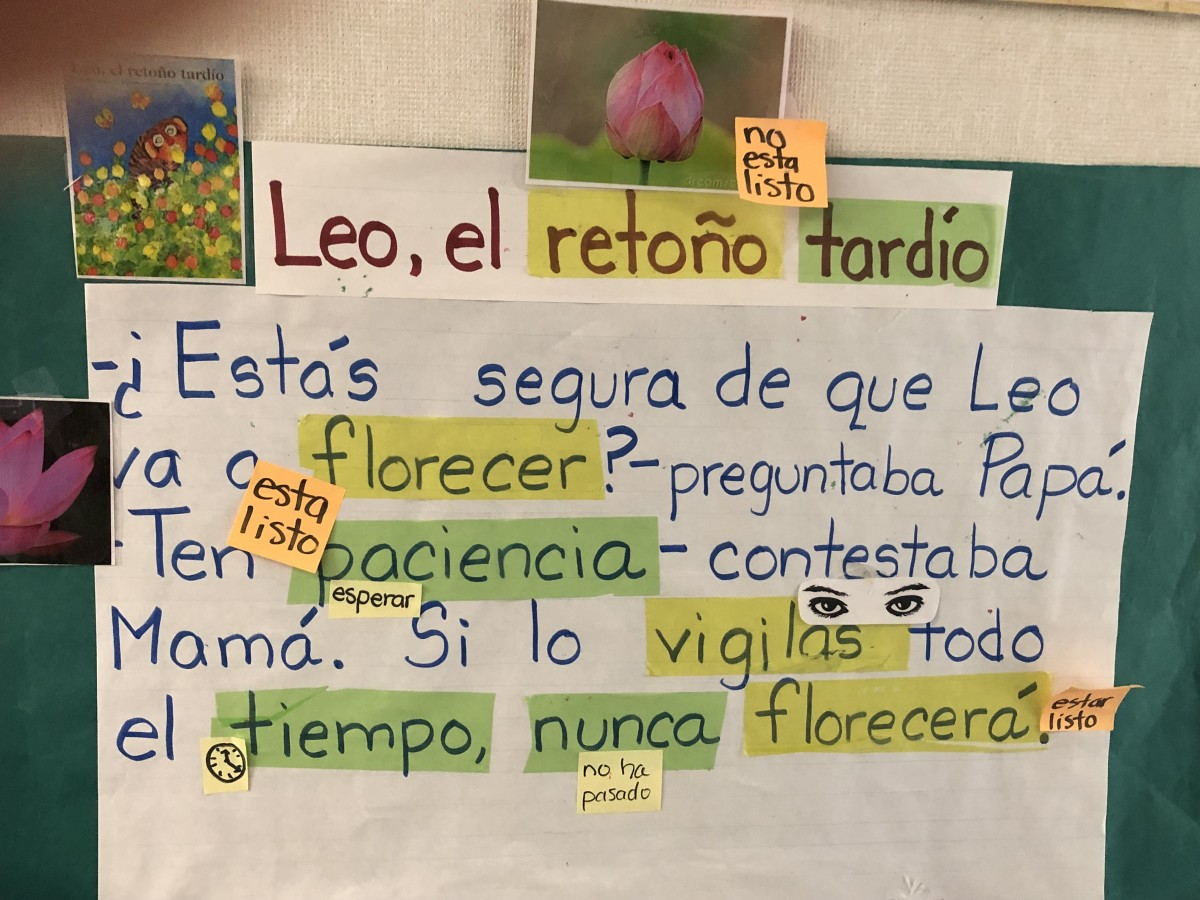 An excerpt from the Spanish edition of the children's book, Leo the Late Bloomer, on the wall in an elementary classroom at Ann Leavenworth School in Fresno, California.